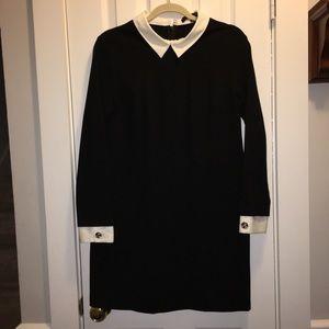 Cynthia Steffe 10 dress black White collar/cuffs